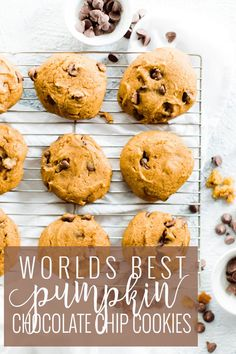 Home Made Doggy Foodstuff FAQ's And Ideas Fluffy, Moist Perfect Chocolate Chip Pumpkin Cookies. These Chocolate Chip Pumpkin Cookies Are A Family Recipe. They Are A Famous Family Recipe Actually. They Are Handed Down From Great Grandmas, To My Grandma, To Pumpkin Cookie Recipe, Pumpkin Recipes, Fall Recipes, Pumpkin Spice, Cookie Recipes, Dessert Recipes, Healthy Pumpkin Cookies, Fall Desserts, Pumpkin Pumpkin