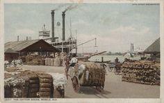 Cotton docks in Mobile, Alabama around 1890