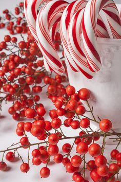 Christmas candy canes and red berries. Christmas Love, Christmas Candy, Christmas Pictures, Christmas Colors, All Things Christmas, Winter Christmas, Christmas Crafts, Merry Christmas, Christmas Decorations