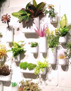 Check out the Naturally Urban Apartment by Linder's at this year's Minneapolis Home & Garden Show!   Urbio planters. Magnetic planters that can attach to any position on the wall plate unit.