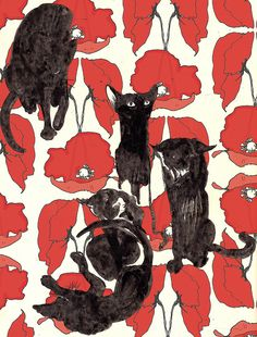 I love cats and poppies. kitties / mina milk