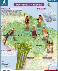 Fiche exposés : Des tribus d'Amazonie