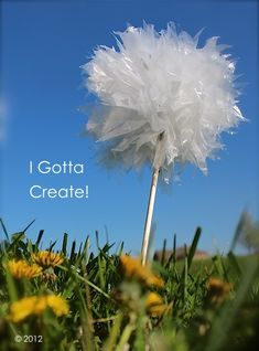 Create a dandelion from a #Plastic Bag. Very cool. http://www.interplas.com/t-shirt-bags