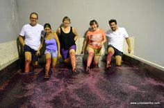 Grape Harvest in Portugal's Douro Valley - Julie Dawn Fox in Portugal