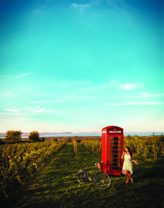 Get to know Nova Scotia's Bay of Fundy and Annapolis Valley region: experience the world's highest tides, whale watching, wine tours and outdoor adventures for hikers, kayakers and bird watchers. O Canada, Canada Travel, Ontario, Annapolis Valley, Prince, The Next Big Thing, High Tide, Whale Watching, Nova Scotia