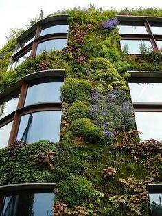 Jardines verticales edificio