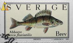 European perch, Sverige, Sweden, stamp, fish, Perca fluviatilis, Abborre, Brev, 2001, L. Sjööblom sc, Inrikes, W. v. Wright L.S.