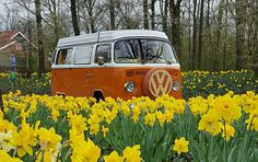 #Spring #vwbus www.retroweekend.nl