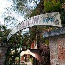 Had amazing 9 course lunch here. Albergo Ristorante Giardino da Felicin, in Monforte d'Alba Italy/Piedmont