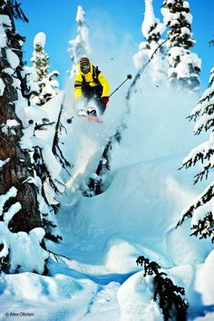 Andy Mahre in Monashees, British Columbia