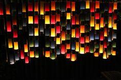 Mifuneyama Rakuen Bamboo light up Festival Japan Places To Visit, Bamboo Light, Plum Tree, Local Parks, Light Up, Tea Lights, Around The Worlds, Chandelier, Ceiling Lights