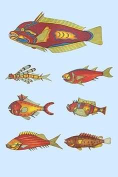 Rarest Curiosities of the Fish of the Indies