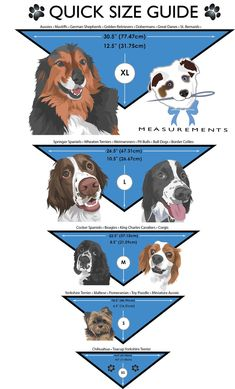 Diy Dog Collar, Dog Collars, Dog Clothes Patterns, Dog Crafts, Dog Items, Dog Pattern, Dog Dresses, Pet Clothes, Dog Clothing