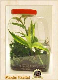 Praying Mantis Clear Plastic Ventilated Habitat -Convenient Handle Design