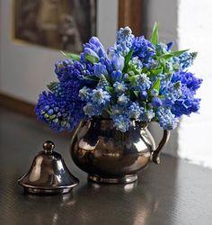 Muscari, Hyacinth, Blue Gentian, Cindy Thibault, Pretty Little Things.