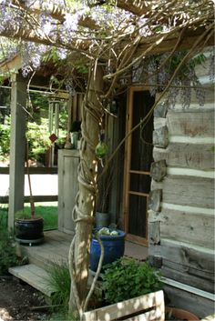 Modern Homesteading, Rural Living and Self-reliance – Where to Start