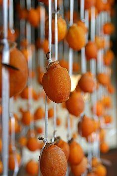 干し柿 dried persimmon brings back happy memories of times with Obachan Fruit And Veg, Fruits And Veggies, Fresh Fruit, Dried Fruit, Japanese Dishes, Japanese Sweets, Japanese Food, Japanese Taste, Japanese Style