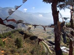 Great views en route to Chele La http://footloosebhutan.com