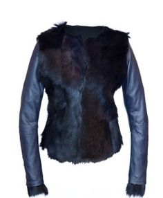 Em Zakhgui horse fur