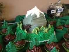 Colorado going away party.... Mountain cake surrounded by a cupcake forest!