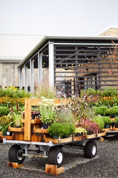 Terrain sells plants, both for indoor and outdoor gardens, but that's where its similarity to a typical garden shop or nursery center ends. Terrain's seasonal selection is collected, arranged, and often paired with complementary planters. Garden Nursery, Plant Nursery, Outdoor Plants, Outdoor Gardens, Garden Center Displays, Garden Centre, Mason Jar Planter, Grow Tent, Abandoned Houses