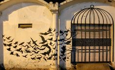 Beautiful Street Art from India. The birds seem to be flying out of a cage, towards the sky, where freedom and liberty beckons