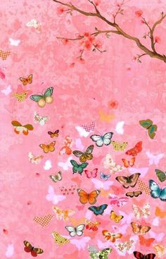Butterfly + Pink flowers