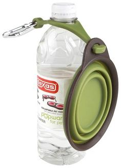 Dexas and Popware for Pets Green Collapsible Travel Cup with Bottle Holder & Carabiner - fits snugly around the neck of any type of plastic water bottle, ready for dog or cat's use. Essential for bug out and get home bags for pet parents. Travel Cup, Pet Travel, Sup Yoga, Bottle Holders, Pet Accessories, Dog Supplies, Dog Care, Dog Mom, Pet Dogs