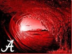 The Tide is Rolling!!!