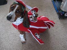 Red Baron Basset Halloween Costume