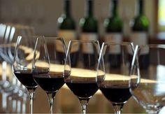 Conha y Toro lança 3º Festival de Vinhos Reserva: duas garrafas pelo preço de uma (Foto: Divulgação)