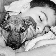 5 Ways Having A Pet Helps A Teen http://www.yourparentinginfo.com/5-ways-having-a-pet-helps-a-teen/?utm_campaign=crowdfire&utm_content=crowdfire&utm_medium=social&utm_source=pinterest