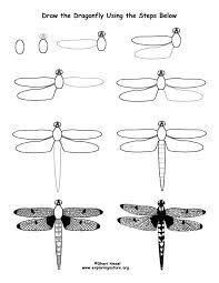 Image result for how to draw dragonfly