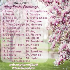 May Instagram Photo Challenge - If you're ever at a loss for what to post on Instagram one day, take some inspiration from the May Instagram Photo Challenge!