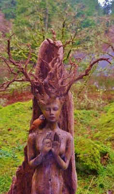 For in the true nature of things, if we rightly consider, every green tree is far more glorious than if it were made of gold and silver. ~Martin Luther This l Art Sculpture En Bois, Driftwood Sculpture, Driftwood Art, Lion Sculpture, Wooden Sculptures, Tree Carving, Wood Carving Art, Art Carte, Wind In My Hair