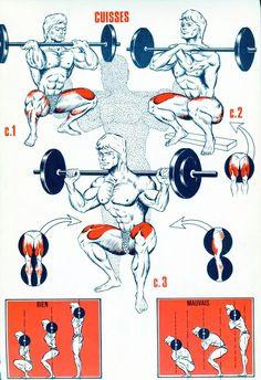 Vetores de força #fitness_hombres_motivacion