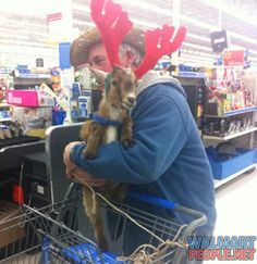 Walmart shopper with his pet goat dressed as a reindeer. What's so weird about that?