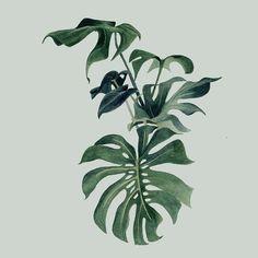 APR   Foliage   Watercolour motif by Louise Jones