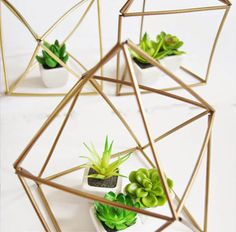 Make gilded geometric planters with this tutorial.