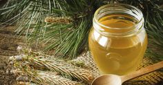 Pine Needle Syrup For Lung Inflammation, Bronchitis and Respiratory Ailments