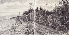 david hockney pecil drawings - Pesquisa do Google