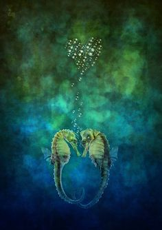 """seahorse: """"Mates for life"""" by Amanda Cass Venus In Pisces, Sea Dragon, Thing 1, Under The Sea, Art World, Large Prints, Shades Of Blue, My Images, Animal Pictures"""