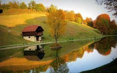Autumn's Lovely Colors in Slovenia. Lets  go to there!