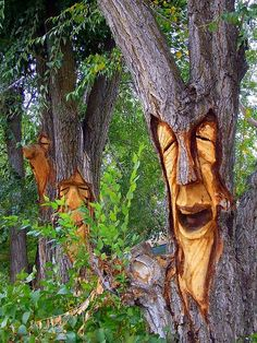 """This is NOT """"Extreme lawn art"""" (which the idiot who originally pinned it called it.) This is tree MUTILATION. Very sick idea. Plus, extremely harmful for the tree. Tree Carving, Wood Carving, Lawn And Garden, Garden Art, Tree Faces, Tree Sculpture, Tree Stump, Fairy Houses, Tree Art"""