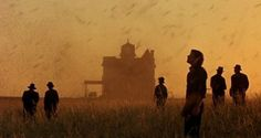 Film: Days of Heaven Year: 1978 Written and directed by: Terrence Malick Starring: Richard Gere, Brooke Adams, Sam Shepard, Linda Manz,. Beau Film, Best Cinematography, Movie Shots, Streaming Hd, Beautiful Film, Beautiful Sunset, Richard Gere, Magic Hour, Love Film