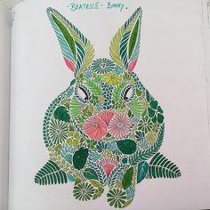 Bunny - Animal Kingdom Book, Millie Marotta
