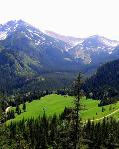 mountains are even more beautiful when they're in your homeland <3 Zakopane - Poland