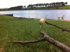 Chapéu ao vento