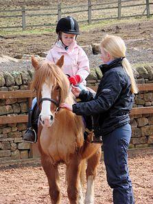 Teach Someone to Ride a Horse