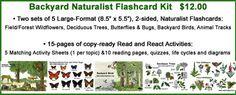 Great natural history coloring sheets-